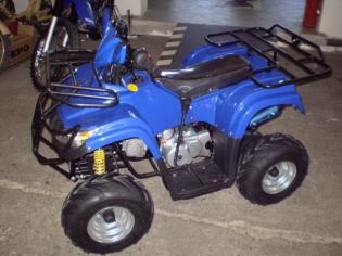 Zvětšit Dětská čtyřkolka Dino 110 cc - DC04