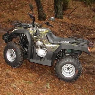 Zvětšit Čtyřkolka Terminator 250 - CTK09